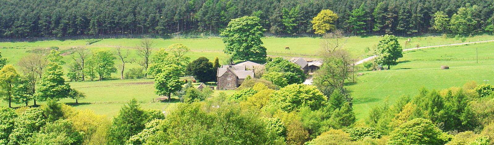 fairboroughs-aerial-view