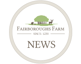 fairboroughs-news